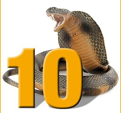 10er-Cobra