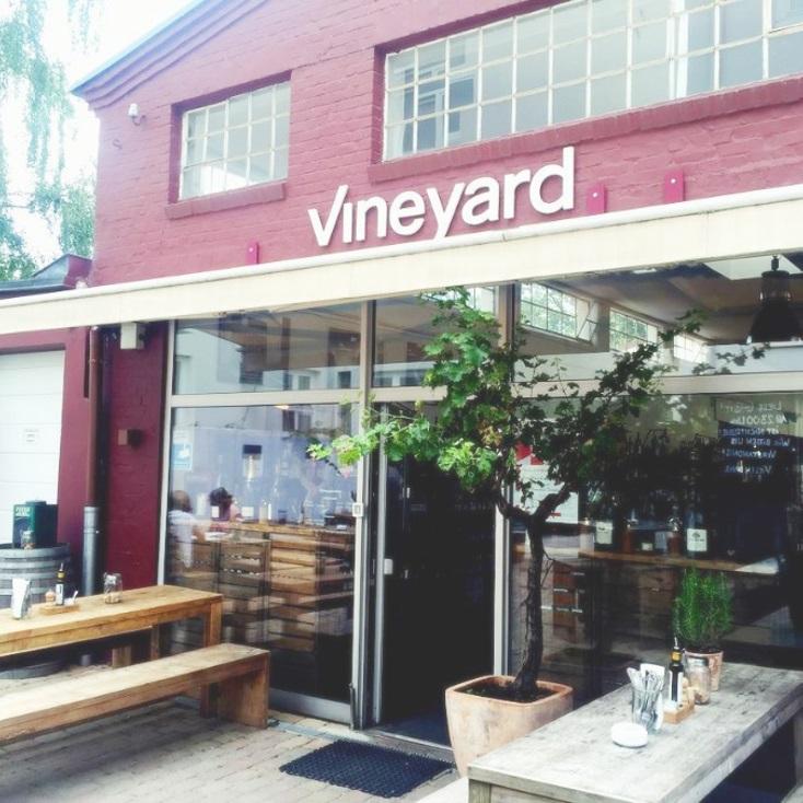 Vineyard_5